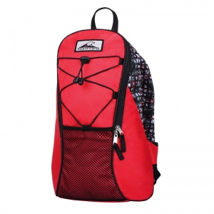 Mochila Simple Cycler 17lts.