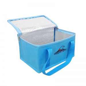 Cooler Bag 6 lts. con manija